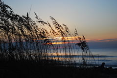восход солнца sc острова звероловства Стоковое фото RF
