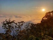 Восход солнца Toowoomba стоковое фото rf