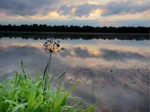 Восход солнца над рекой Стоковое Изображение