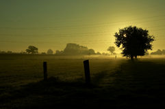 восход солнца 2 Стоковое Изображение