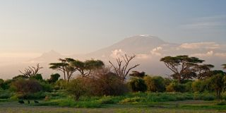 восход солнца kilimanjaro Стоковые Фотографии RF