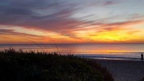 восход солнца ладони пляжа Стоковые Изображения