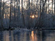 Восход солнца берега озера Стоковое Изображение