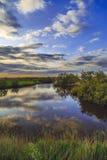 Восход солнца в заболоченных местах роз Стоковые Фотографии RF
