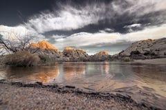 Восход солнца в национальном парке дерева Иешуа Стоковые Изображения RF