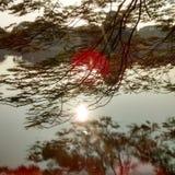 Восход солнца в озере Pamulang Стоковые Изображения RF