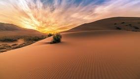 Восход солнца в песчанных дюнах петь в Altyn Emel 4K TimeLapse - сентябрь 2016, Алма-Ата и Астана, Казахстан видеоматериал