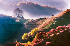 Восход солнца в Трансильвании   Roamania! Стоковое фото RF