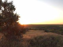 Восход солнца в Украине Стоковые Фото