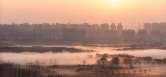 Восход солнца в Шанхае, Китае стоковые фотографии rf