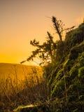 Восход солнца в шотландских границах Стоковые Изображения