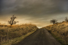 Восход солнца в шотландской дороге Стоковые Фото