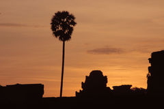 Восход солнца в wat angkor Стоковая Фотография RF