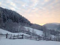 Восход солнца леса Стоковое Изображение RF