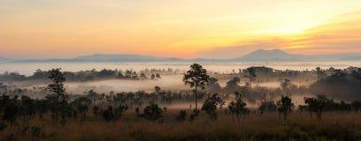 Восход солнца зеленых холмов панорамы красивый накаляя теплый, драматическое shi Стоковые Изображения
