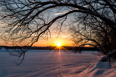 Восход солнца зимы на озере ондатр Стоковое Фото
