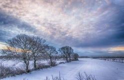 Восход солнца зимы Стоковое фото RF