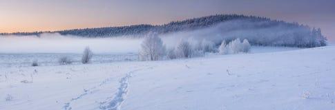 Восход солнца зимы Стоковые Изображения