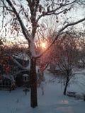 Восход солнца зимы Стоковая Фотография