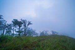 Восход солнца и туман холмов Стоковые Фото