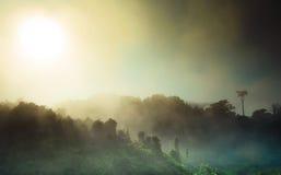 Восход солнца и туман Стоковое фото RF