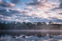 Восход солнца и туман Стоковые Изображения RF