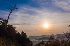 Восход солнца и deadtree Стоковое Изображение RF