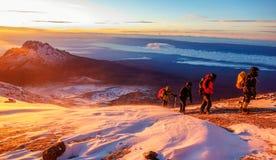 Восход солнца Килиманджаро стоковое фото rf