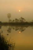 восход солнца красивейшей весны природы лужка иллюстрации положительной солнечный Стоковые Фото
