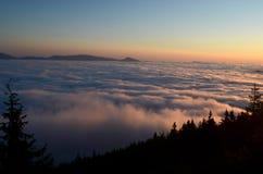 восход солнца красивейшей весны природы лужка иллюстрации положительной солнечный Стоковое Изображение RF