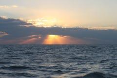 восход солнца красивейшей весны природы лужка иллюстрации положительной солнечный Стоковое Изображение