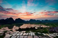 восход солнца красивейшей весны природы лужка иллюстрации положительной солнечный Стоковая Фотография RF