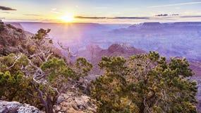 Восход солнца на грандиозном каньоне стоковое изображение rf