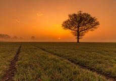 Восход солнца над Западным Йоркширом Стоковое Фото