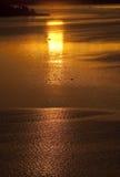 Восход солнца над каналом Kazinga вышесказанного Уганда стоковые изображения