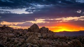 Восход солнца на национальном парке дерева Иешуа Стоковые Фото