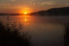 Восход солнца на озере предыдущее утро ландшафта вода тумана, силуэты леса, лучи восходящего солнца Стоковая Фотография