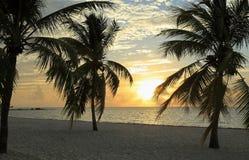 Восход солнца на пропуске пляжа Smathers Стоковое Изображение RF