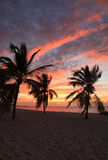 Восход солнца на пропуске пляжа Smathers Стоковая Фотография RF