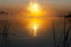Восход солнца на реке в утре России Стоковое фото RF