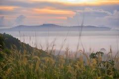 Восход солнца на туманном поле стоковые изображения rf