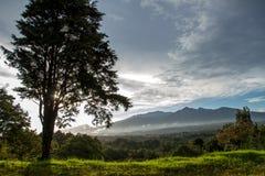Восход солнца над туманными тропическими горами Стоковая Фотография RF