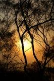 Восход солнца на холме Стоковые Фотографии RF