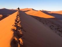 Восход солнца на дюне 45, пустыня Namib, Намибия Стоковые Изображения RF