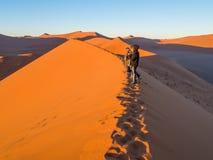 Восход солнца на дюне 45, пустыня Namib, Намибия Стоковое Фото