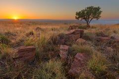 Восход солнца на Highveld Стоковые Фото