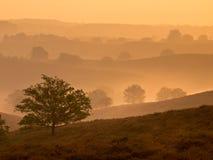 Восход солнца над Posbank Стоковые Фотографии RF