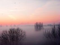 Восход солнца осени стоковое изображение