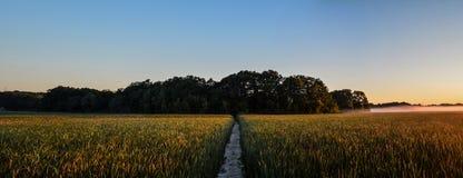 Восход солнца парка ножовщика Стоковые Фотографии RF