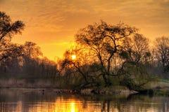 Восход солнца парка Стоковая Фотография RF